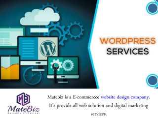 We Provides Best offshore WordPress development Services In India