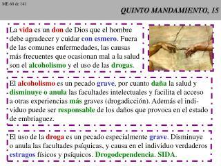 QUINTO MANDAMIENTO, 15