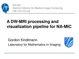 A DW-MRI processing and visualization pipeline for NA-MIC