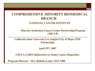 COMPREHENSIVE MINORITY BIOMEDICAL BRANCH    NATIONAL CANCER INSTITUTE