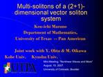 Multi-solitons of a 21-dimensional vector soliton system