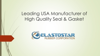 Leading Silicone Rubber Seals & Gaskets