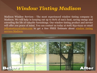 Best Madison WI Window Tinting Experts