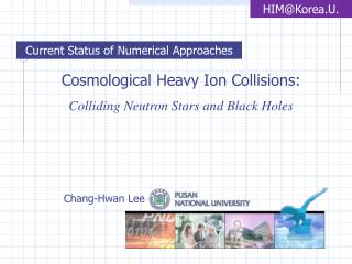 Cosmological Heavy Ion Collisions: Colliding Neutron Stars and Black Holes