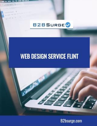 Web Design Service Flint