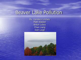 Beaver Lake Pollution