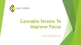Cannabis strains to improve focus