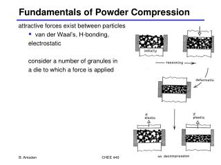 Fundamentals of Powder Compression