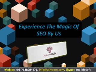 Experience The Magic Of SEO By Us