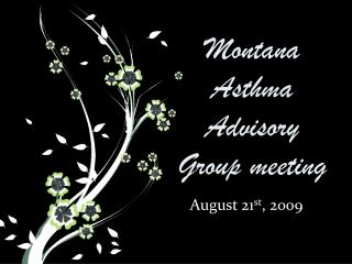 Montana Asthma Advisory Group meeting
