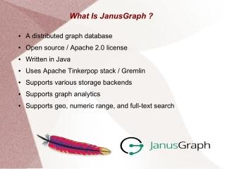 JanusGraph DB