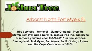 Arborist North Fort Myers FL
