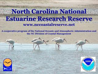 North Carolina National Estuarine Research Reserve nccoastalreserve  A cooperative program of the National Oceanic and A