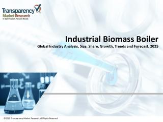 Global Industrial Biomass Boiler Market Outlook, 2025