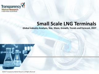 Small Scale LNG Terminals Market Analysis, Industry Outlook, Growth and Forecast 2027