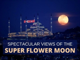 Spectacular views of the super flower moon