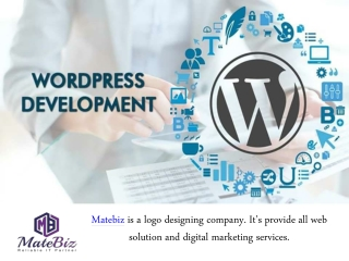 Contact Us To Hire Best WordPress Developers