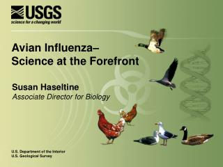 Susan Haseltine Associate Director for Biology