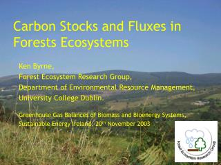 Carbon Stocks and Fluxes in  Forests Ecosystems