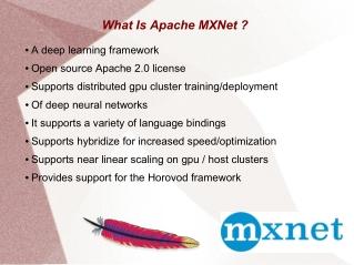 Apache MXNet AI