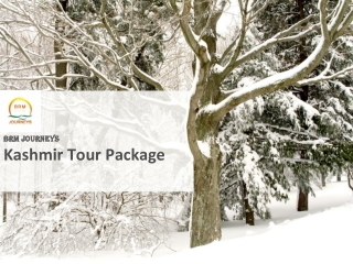 Kashmir Tour Package, Holiday in Kahmir