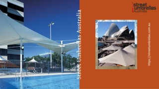 Choose The Best Umbrellas For Your Business