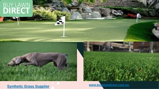 Synthetic Grass Supplier