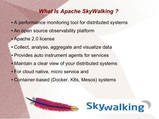 Apache SkyWalking