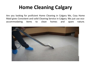 Best Home Cleaning in Calgary