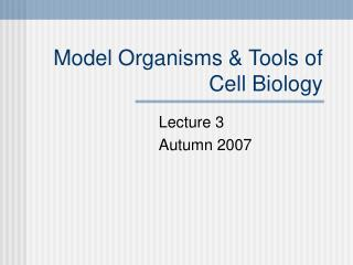Model Organisms & Tools of Cell Biology