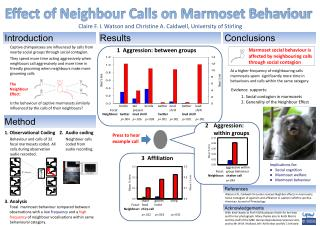 Effect of Neighbour Calls on Marmoset Behaviour