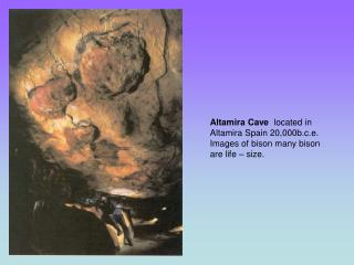 Altamira Cave  located in Altamira Spain 20,000b.c.e. Images of bison many bison are life   size.