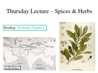 Thursday Lecture – Spices & Herbs