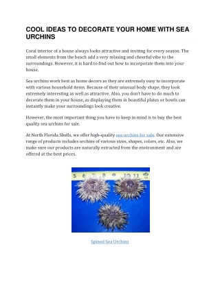 Cool Ideas to Decorate Your Home With Sea Urchins