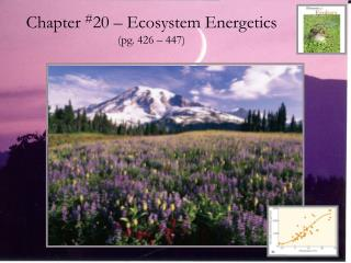 Chapter  # 20 – Ecosystem Energetics (pg. 426 – 447)