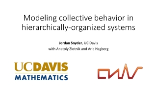 Modeling collective behavior in hierarchically-organized systems