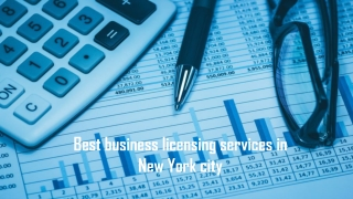 Best business licensing services in New York city