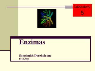 Enzimas Somsimith Deechaleune BIOL3051