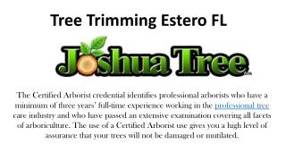 Tree Trimming Estero FL